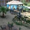 Americas Best Value Inn Las Cruces