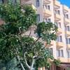Grand Hotel Kekova