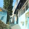 Big Blue Backpackers Lodge