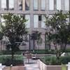 Alameda Centro Historico