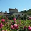 Country House La Torretta