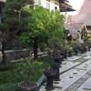 Omah Eling Hotel