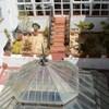 Alquimia Hostel Cadiz