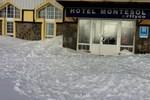Отель Hotel Montesol Arttyco