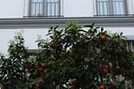 Апартаменты Malaver 23