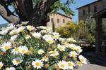 Отель Casa Di Campagna In Toscana