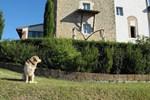 Апартаменты Castello di Fulignano