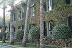 Отель Jardín Milenio