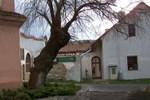 Гостевой дом Restaurace a penzion U Lva