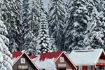 Ski Chalet Borovets