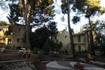 Отель Safed Inn