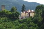 Отель Hotel Schloss Hornberg