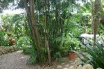 Hotel Jardines De Monte Verde
