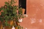Masseria Asciano