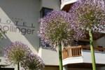 Отель Hotel Pollinger