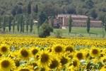 Отель I Grandi Di Toscana