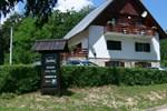 Гостевой дом Vila Vuk