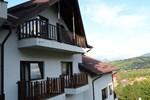Гостевой дом Vila Transylvanian Inn