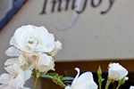Отель InnJoy Boutique Hotel