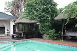 Cape Town Palms