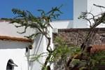 La Casa Del Huizache - Boutique Villas Xichu