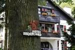 Отель Hotel Dreyeroord