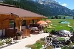 Отель Almdorf Tirol