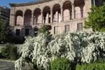 Гостиница Villa des Roses Hotel