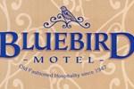 Отель Bluebird Motel