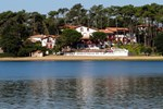 Les Hortensias Du Lac
