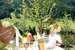 Отель Hotel Alp-Larain