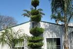 Отель Mission Bell Motel