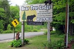 Отель Bear Tree Lodge