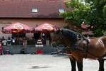 Гостевой дом Rodinny Penzion s Restauraci - Hospudka na Navsi