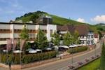 Отель Hotel Ritter Durbach