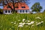 Гостевой дом Gutshaus Ketelshagen