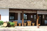 Гостевой дом Blum Pince - Borozó Vendégház