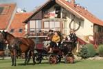Гостевой дом Agritourism Farm Podkowa