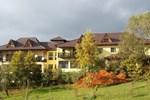 Отель Pension Casa cu Tei
