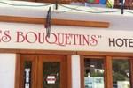 Les Bouquetins