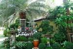 Pawida Resort