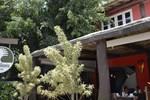 Гостевой дом Pousada Aroeira