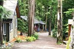 Отель Surfs Inn Rainforest Cottages