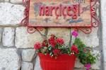 Отель Narcicegi Hotel