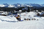 Апартаменты Les Terrasses du Mont Blanc