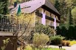 Berghotel Schwarzwaldblick-Triberg