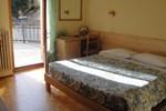 Отель Hotel Viola