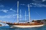 Blue Voyage Forsa