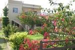 Отель Pandora Studios