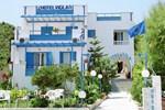 Отель Hotel Vigla